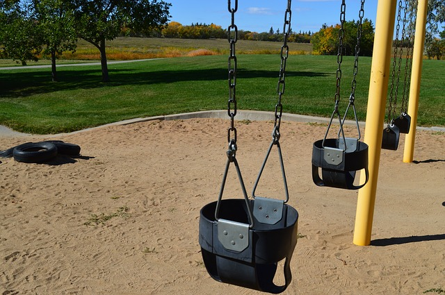 Checklist for Swing Set